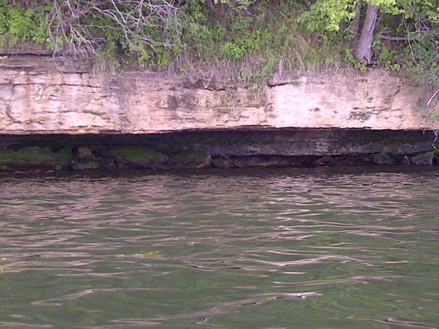 Fish sticks GLSD-GLCC shoreline 005